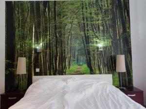 Foto van de bedden en fotowand in hotelkamer voor mindervaliden in Hotel Villa Ruimzicht te Doetinchem.
